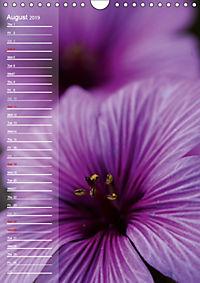 Garden Flowers 2019 (Wall Calendar 2019 DIN A4 Portrait) - Produktdetailbild 8