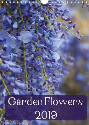 Garden Flowers 2019 (Wall Calendar 2019 DIN A4 Portrait), Claire Wilson LLE-Photography