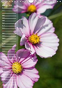 Garden Flowers 2019 (Wall Calendar 2019 DIN A4 Portrait) - Produktdetailbild 3
