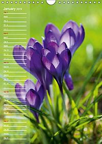 Garden Flowers 2019 (Wall Calendar 2019 DIN A4 Portrait) - Produktdetailbild 1