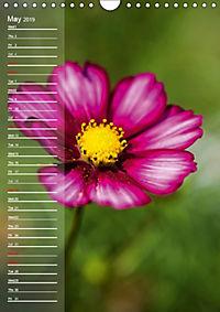 Garden Flowers 2019 (Wall Calendar 2019 DIN A4 Portrait) - Produktdetailbild 5