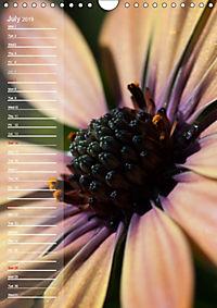 Garden Flowers 2019 (Wall Calendar 2019 DIN A4 Portrait) - Produktdetailbild 7