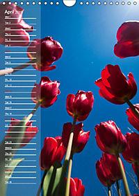 Garden Flowers 2019 (Wall Calendar 2019 DIN A4 Portrait) - Produktdetailbild 4
