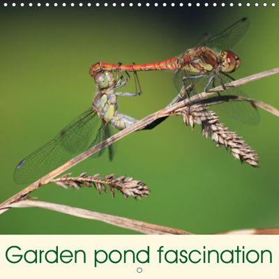 Garden pond fascination (Wall Calendar 2019 300 × 300 mm Square), Reinhard Rickert