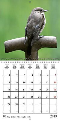 Garden pond fascination (Wall Calendar 2019 300 × 300 mm Square) - Produktdetailbild 7