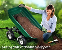 Gartenkarre mit Kippfunktion - Produktdetailbild 2