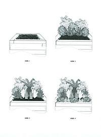 Gartenstile & Gestaltung - Produktdetailbild 8