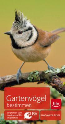 Gartenvögel bestimmen - Hans-Martin Busch |