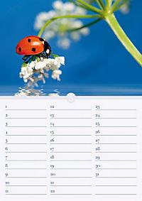 Geburtstagskalender Herzlichen Glückwunsch; Birthday Calendar Happy Birthday - Produktdetailbild 5