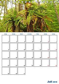 Geburtstagsplaner - Neuseelands Natur (Tischkalender 2019 DIN A5 hoch) - Produktdetailbild 7