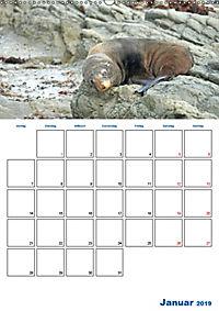 Geburtstagsplaner - Neuseelands Natur (Wandkalender 2019 DIN A2 hoch) - Produktdetailbild 1