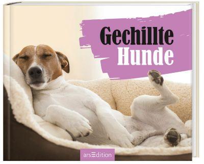 Gechillte Hunde, Paulus Vennebusch