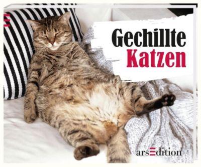 Gechillte Katzen, Paulus Vennebusch