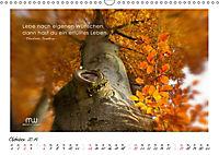 Gedanken... Bildkalender mit Sprüchen (Wandkalender 2019 DIN A3 quer) - Produktdetailbild 10