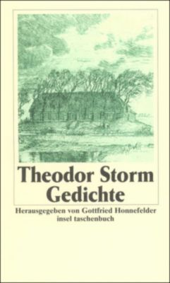 gedichte buch von theodor storm portofrei bestellen. Black Bedroom Furniture Sets. Home Design Ideas