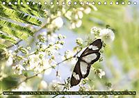 Geheimtipp Uganda (Tischkalender 2019 DIN A5 quer) - Produktdetailbild 2