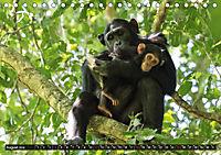 Geheimtipp Uganda (Tischkalender 2019 DIN A5 quer) - Produktdetailbild 9