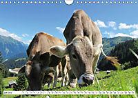 Geliebte Steiermark im Herzen Österreichs (Wandkalender 2019 DIN A4 quer) - Produktdetailbild 7