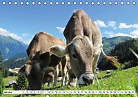 Geliebte Steiermark im Herzen Österreichs (Tischkalender 2019 DIN A5 quer) - Produktdetailbild 7