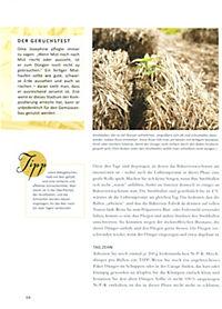 Genial Gärtnern mit Strohballen - Produktdetailbild 5