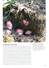Genial Gärtnern mit Strohballen - Produktdetailbild 9