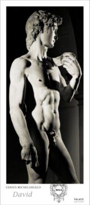 Genius Michelangelo: David, Michelangelo Buonarroti