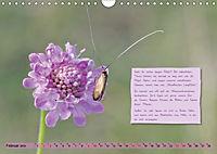 GEOclick Lernkalender: Insekten (Wandkalender 2019 DIN A4 quer) - Produktdetailbild 2