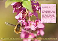 GEOclick Lernkalender: Insekten (Wandkalender 2019 DIN A2 quer) - Produktdetailbild 4
