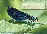 GEOclick Lernkalender: Insekten (Wandkalender 2019 DIN A2 quer) - Produktdetailbild 3