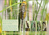 GEOclick Lernkalender: Insekten (Wandkalender 2019 DIN A2 quer) - Produktdetailbild 6