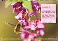 GEOclick Lernkalender: Insekten (Wandkalender 2019 DIN A3 quer) - Produktdetailbild 4
