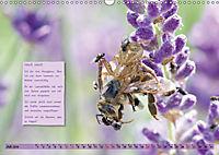 GEOclick Lernkalender: Insekten (Wandkalender 2019 DIN A3 quer) - Produktdetailbild 7