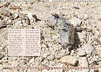 GEOclick Lernkalender: Insekten (Wandkalender 2019 DIN A3 quer) - Produktdetailbild 8