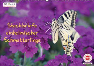 GEOclick Lernkalender: Steckbriefe einheimischer Schmetterlinge (Wandkalender 2019 DIN A2 quer), Klaus Feske