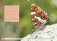 GEOclick Lernkalender: Steckbriefe einheimischer Schmetterlinge (Wandkalender 2019 DIN A2 quer) - Produktdetailbild 5