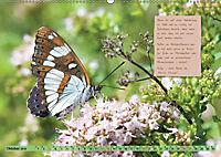 GEOclick Lernkalender: Steckbriefe einheimischer Schmetterlinge (Wandkalender 2019 DIN A2 quer) - Produktdetailbild 10