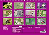 GEOclick Lernkalender: Steckbriefe einheimischer Schmetterlinge (Wandkalender 2019 DIN A2 quer) - Produktdetailbild 13