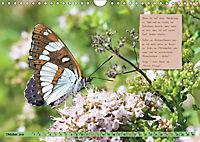 GEOclick Lernkalender: Steckbriefe einheimischer Schmetterlinge (Wandkalender 2019 DIN A4 quer) - Produktdetailbild 10