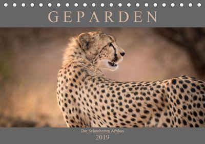 Geparden - Die Schönheiten Afrikas (Tischkalender 2019 DIN A5 quer), Markus Pavlowsky