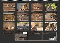 Geparden - Die Schönheiten Afrikas (Wandkalender 2019 DIN A2 quer) - Produktdetailbild 13