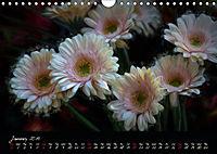Gerberas Floral Impressions (Wall Calendar 2019 DIN A4 Landscape) - Produktdetailbild 1