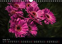 Gerberas Floral Impressions (Wall Calendar 2019 DIN A4 Landscape) - Produktdetailbild 3