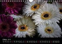 Gerberas Floral Impressions (Wall Calendar 2019 DIN A4 Landscape) - Produktdetailbild 10