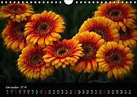 Gerberas Floral Impressions (Wall Calendar 2019 DIN A4 Landscape) - Produktdetailbild 11