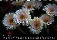Gerberas Floral Impressions (Wall Calendar 2019 DIN A3 Landscape) - Produktdetailbild 1