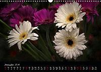 Gerberas Floral Impressions (Wall Calendar 2019 DIN A3 Landscape) - Produktdetailbild 12