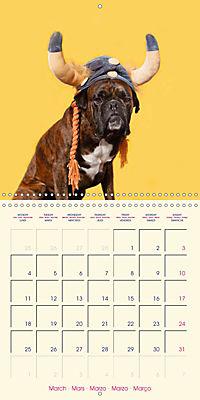 German Boxer (Wall Calendar 2019 300 × 300 mm Square) - Produktdetailbild 3