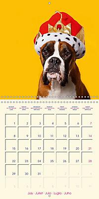 German Boxer (Wall Calendar 2019 300 × 300 mm Square) - Produktdetailbild 7