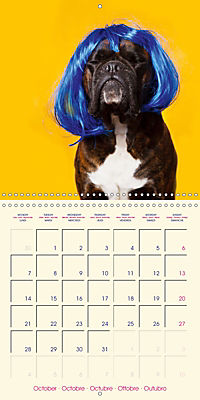German Boxer (Wall Calendar 2019 300 × 300 mm Square) - Produktdetailbild 10