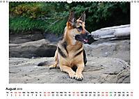 German Shepherd Dog with Friends (Wall Calendar 2019 DIN A3 Landscape) - Produktdetailbild 8